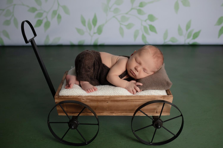 photographe de nouveau-né Tatiana Brisson à Etrelles